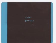 Canal-RayoX1